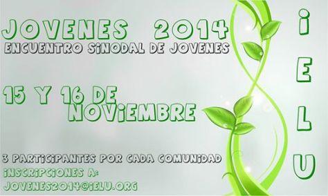 encuentro sinodal junvenil 2014
